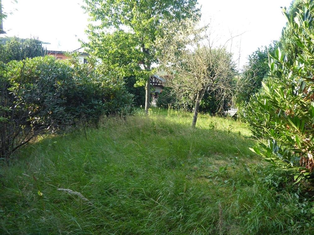 Vorgarten, seitlich vom Haus