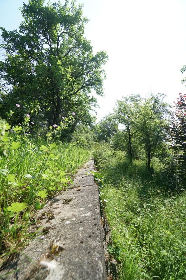 Natursteinmauer Ansicht 2