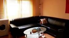 Wohn-Esszimmer mit Küchenzeile