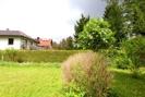 Blick in Nachbargarten