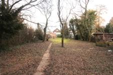 Blick in den Garten 2