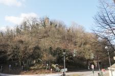 Ausblick auf die Godesburg 2