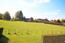 Blick von der Terrasse auf die angrenzende Wiesen-/Weidelandschaft