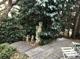 Wintergarten 1 m. kl. Terrasse
