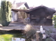 Teich/Gartenhütte