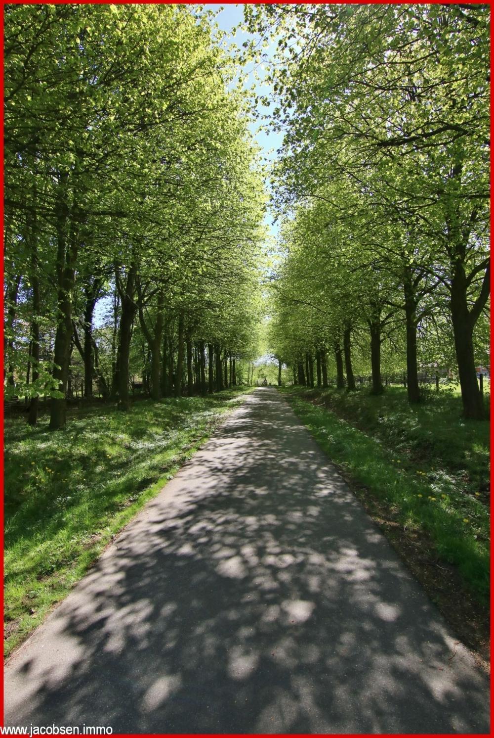 Weg zwischen Grundstück und Koppel