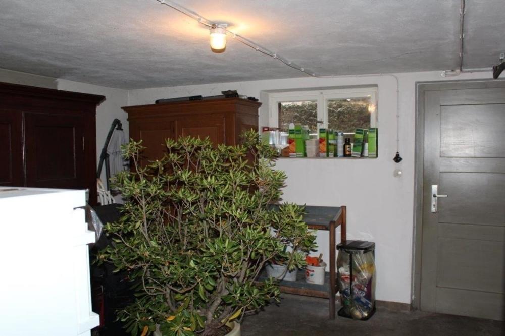 Keller mit Ausgang zum Garten.png