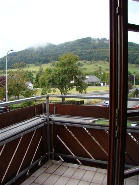...Blick vom Balkon.png