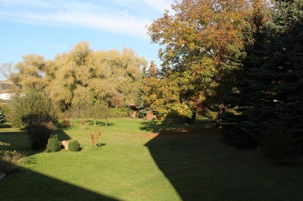 ...herrlicher Garten.png