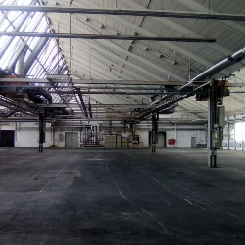 Calw Große Halle 1