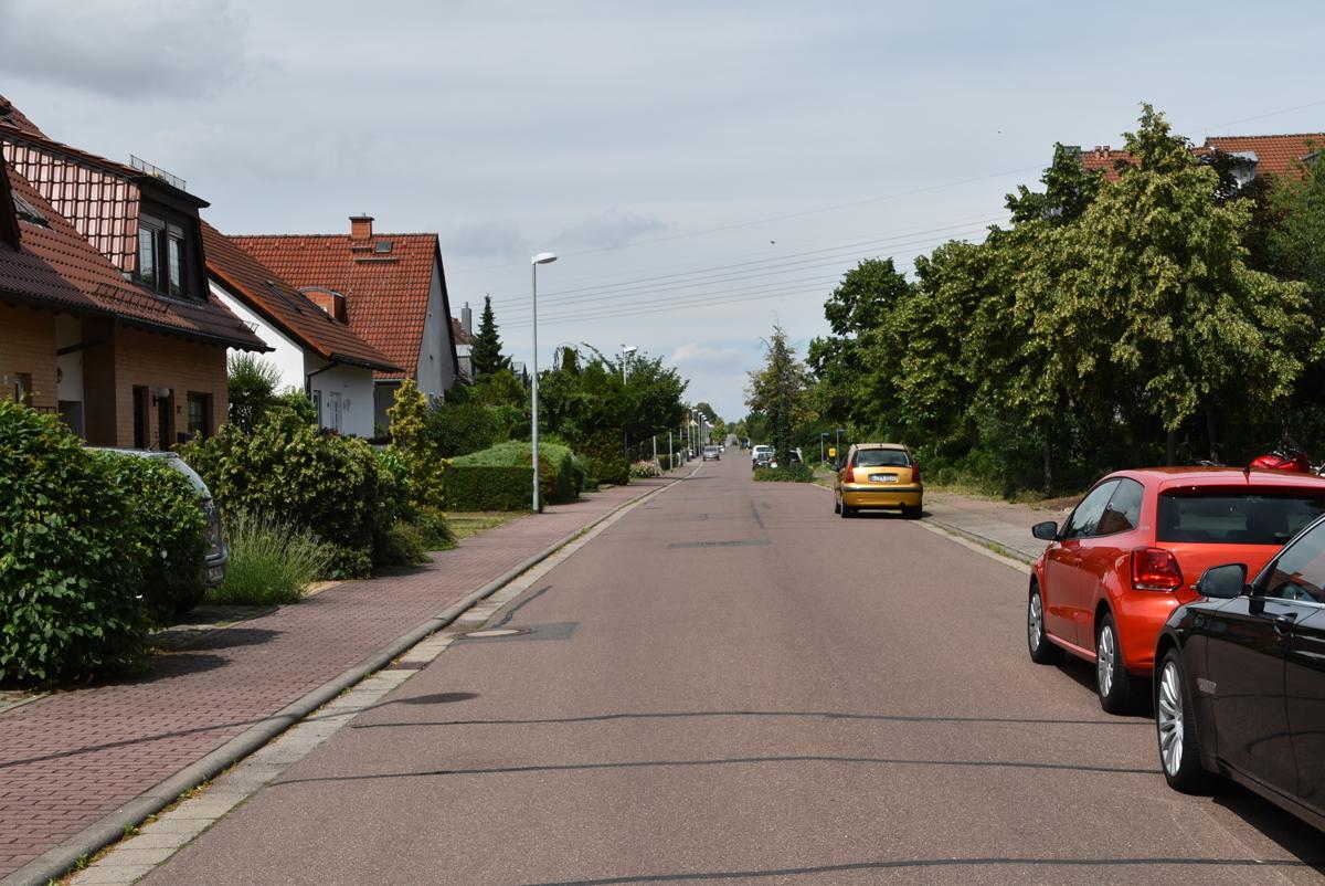 An den Linden I