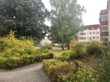 weitläufiger Gartenbereich