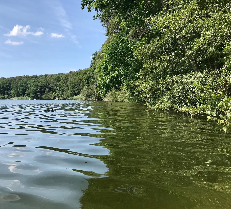 der nahe See