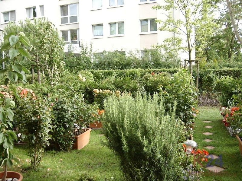Garten_2011