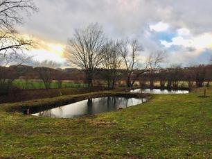Unterer Teil des grundstücks mit Teichanlage