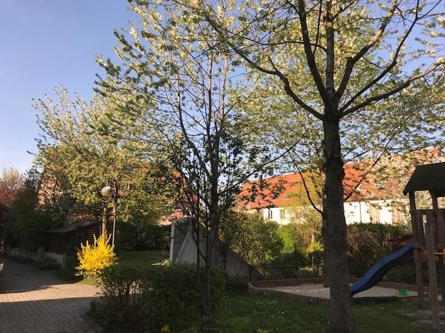 Baum Kinderspielplatz