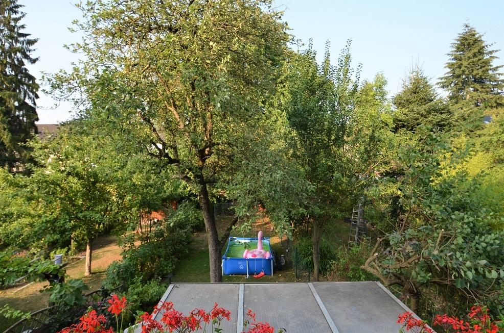 Ansicht Terrasse auf Garten