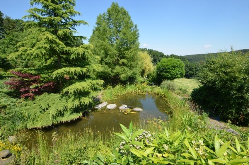 Ansicht Teichanlage