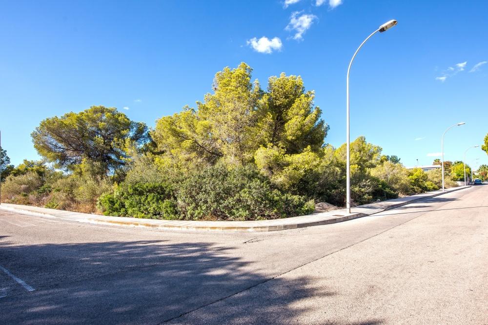 Dieses weitläufiges Eck-Grundstück in Sol de Mallorca befindet sich in einer der schönsten und exklusivsten Regionen der Insel. Das ca. 2