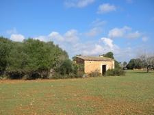 Ruine auf Finca