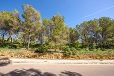 Baugrundstück in Cala Vinyas