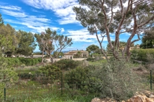 Property in Sol de Mallorca for sale