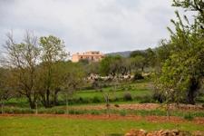 Finca in San Lorenzo