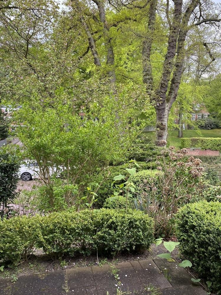 Ausblick vorn von kl. Terrasse