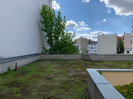 Seitenflügel Dach
