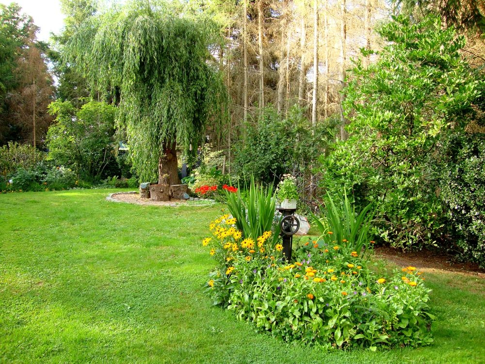 Noch mehr Garten