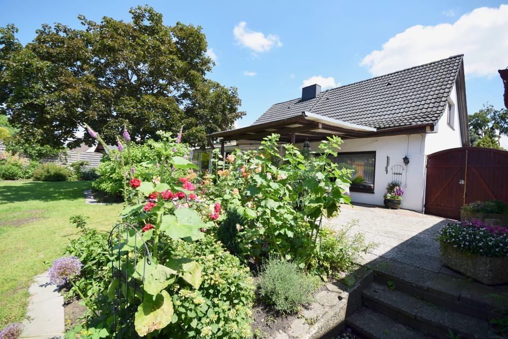Allgemeine Ansicht Garten und Terrasse