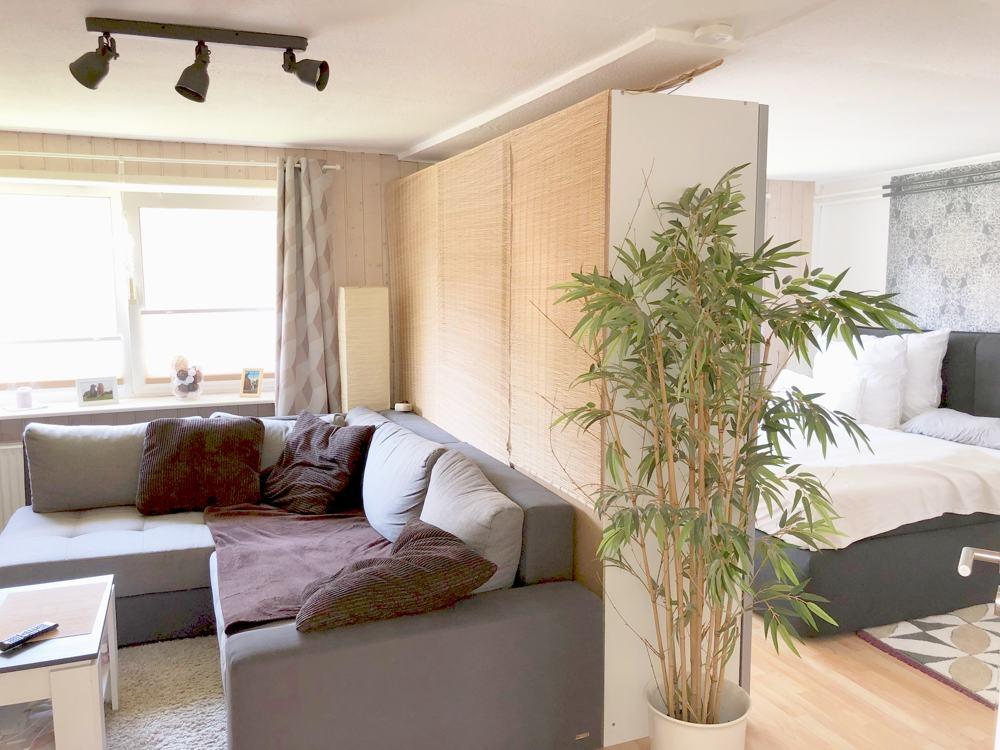 Wohnzimmer und Schlafzimmer mit Trennwand