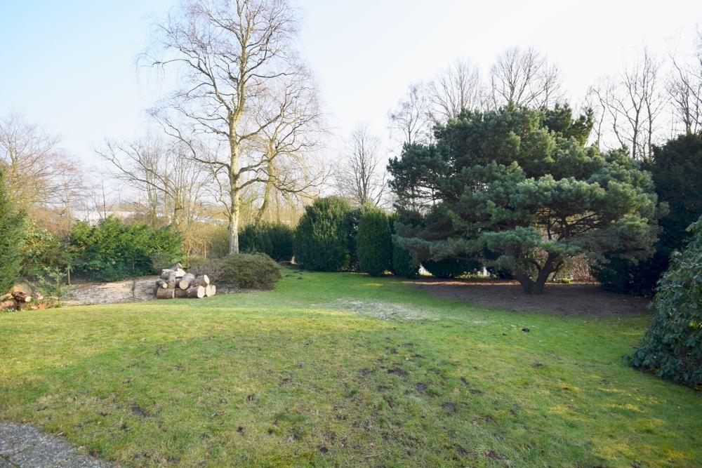 Weiterer Blick in den Garten März 2018