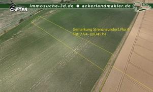 Ackerland 77_4