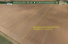 Ackerland 5_2