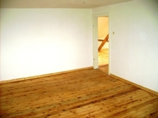 Zimmer2a1
