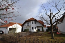 Frontal-Garten