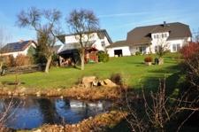 Garten-Teich-1