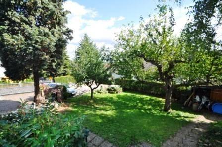 Garten von der Terrasse2