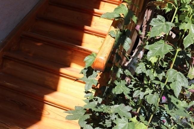 schöne Holztreppe
