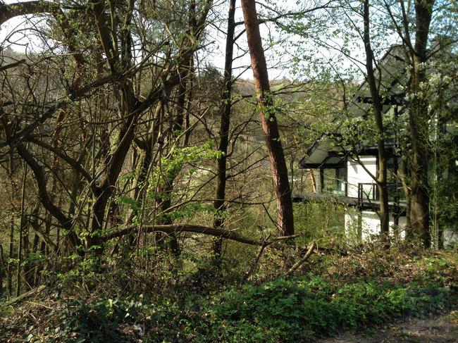 Bauplatz vom Buchenweg mit Nachbarhaus