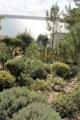 Mediterrane Gartenanlage