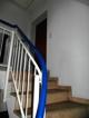 002171 LI Teppe zur zweiten Eingangstür