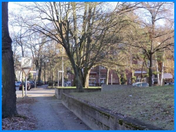 Blick zur Riemeisterstraße