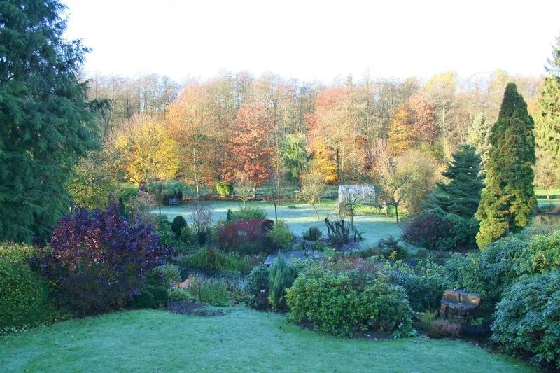 Blick von Balkon in den Garten