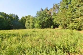 Grundstück in Kirchseelte – Hechler & Twachtmann Immobilien GmbH