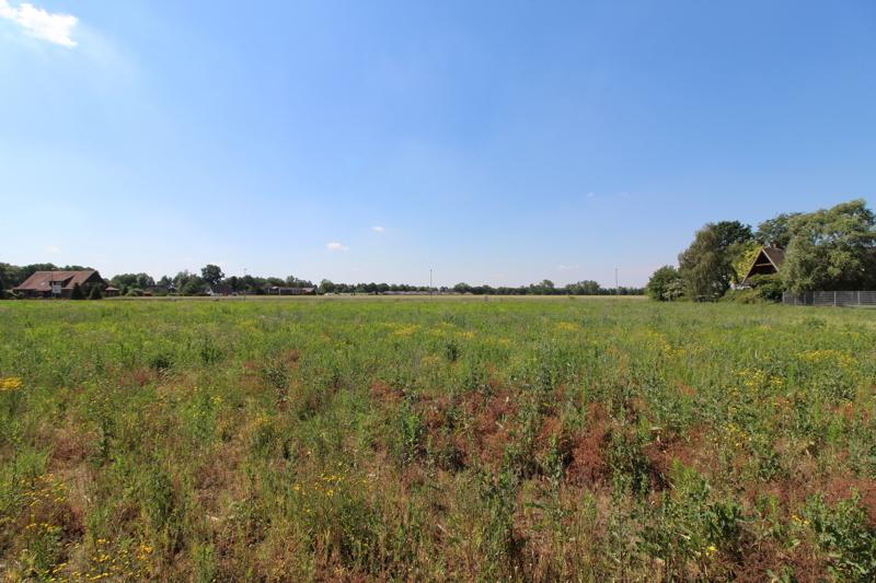Grundstück - Blick Richtung Süden
