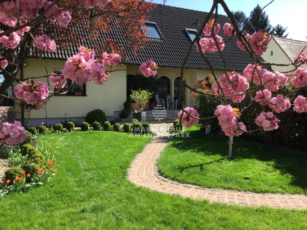 Haus_vorne mit Blüten_2.