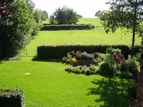 Ausschnitt Garten