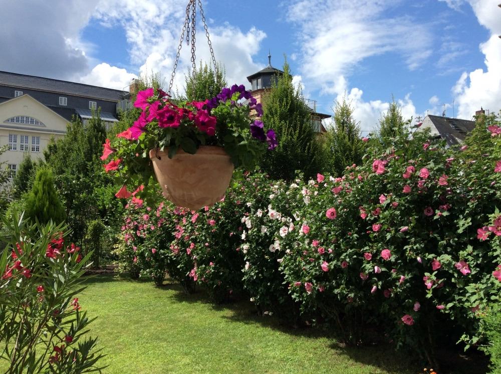 Garten im Sommer
